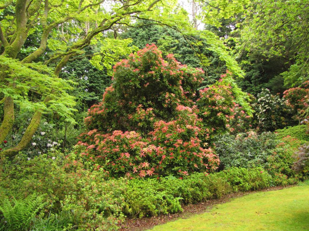 Woodland Gardens | 1024 x 768 · 318 kB · jpeg