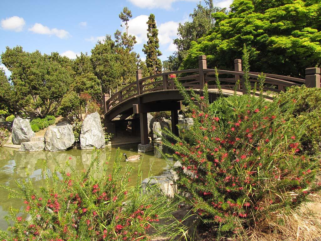 USA and Canada 2013/San Jose Japanese Garden 130415 ...