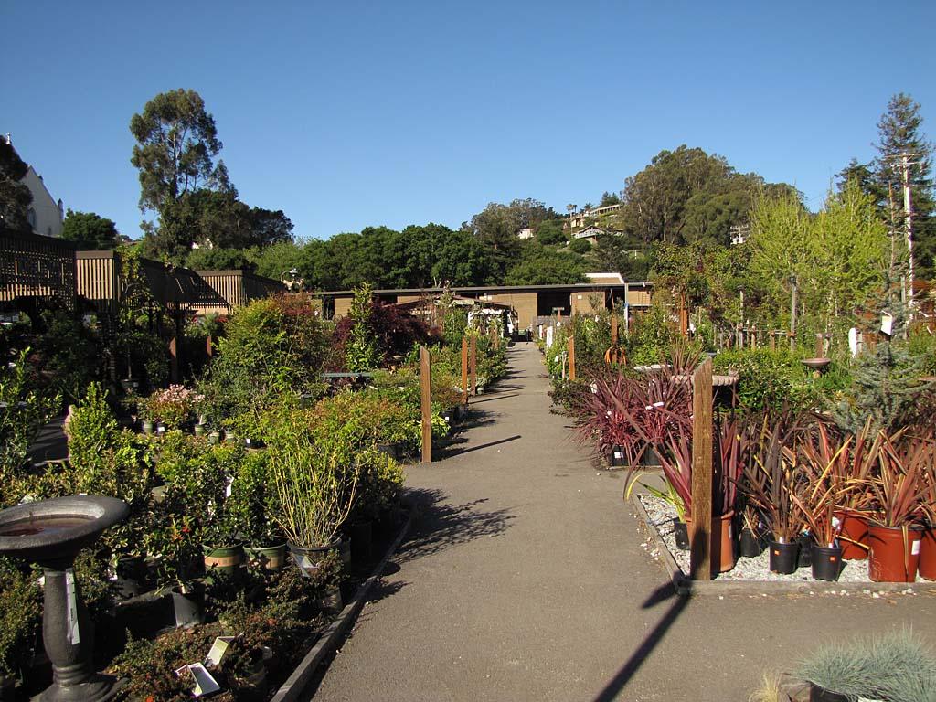 Garden Supply Santa Cruz - Garden Ideas