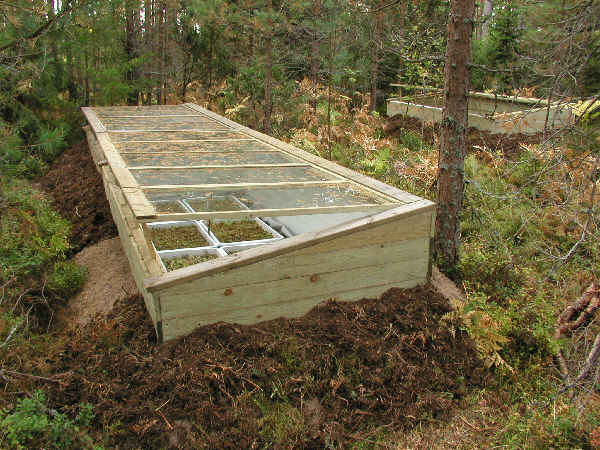 Building and using a cold frame BlackHillsGardencom Gardening